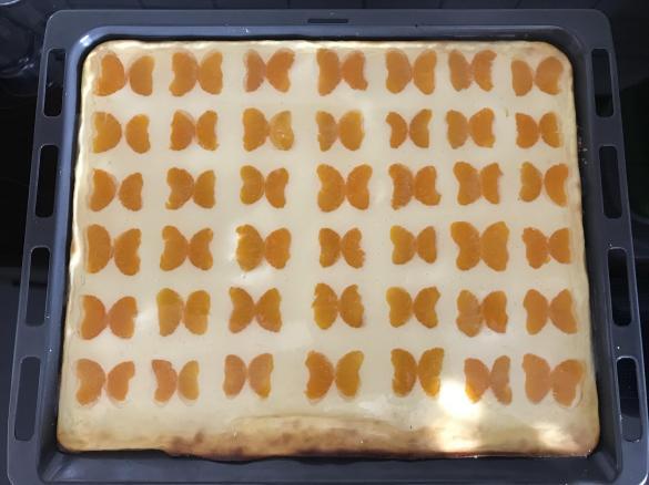 Photo of Schmetterling Kuchen