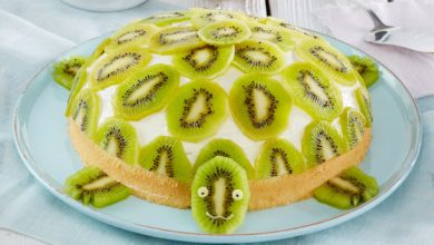 Photo of Schildkröten Torte